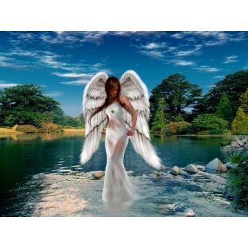 Tarot dos Anjos
