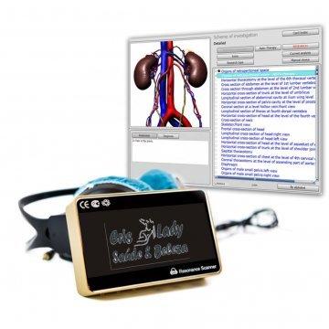 Analisador da Ressonância Quantica Force One Tratamentos+Aura+Profissional 4 Geração